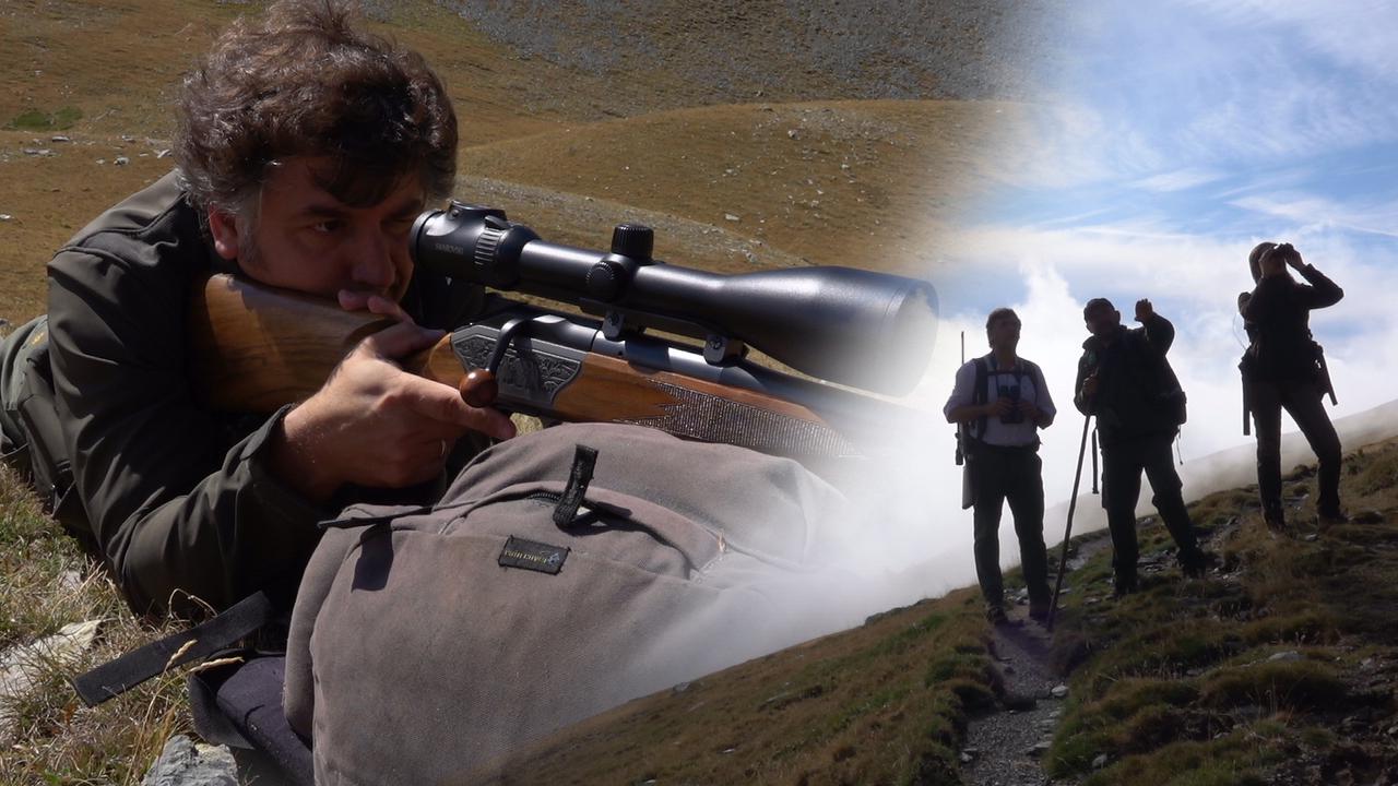 Sarrios, gestión y caza en Freset Setcases
